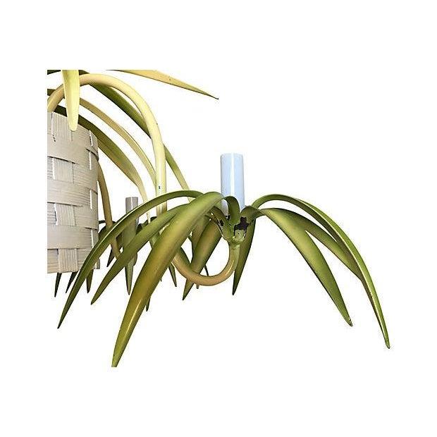 Italian Spider Plant Chandelier - Image 8 of 9