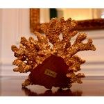 Image of Designer Gilded Coral