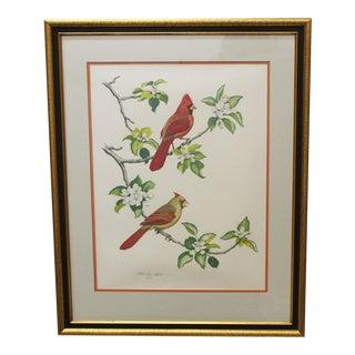 The Cardinal Lithograph by Albert Earl Gilbert
