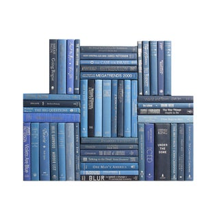 Modern Blue & Silver Book Wall, S/50