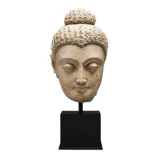 Gandhara Stucco Head of a Buddha