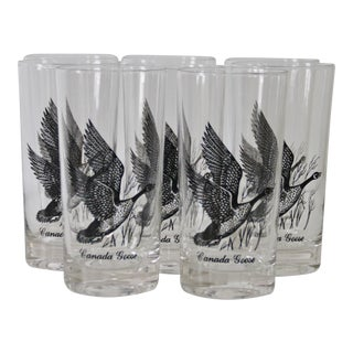 1960s Canada Goose Glasses - Set of 8