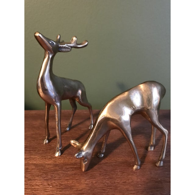 Brass Deer Statues - a Pair - Image 5 of 5
