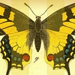 Image of Vintage 'Butterflies on Stripes' Archival Print