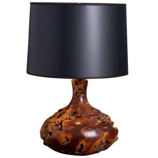Handmade Petrified Wood Table Lamp with Black Paper Shade