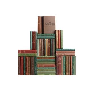 Modern Earthtone Book Wall, S/50