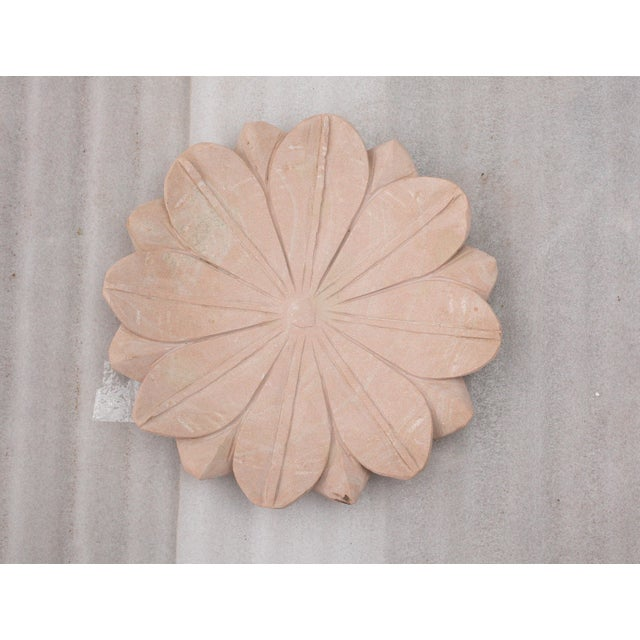 Image of Lotus Flower Trays in Blush - Set of 5