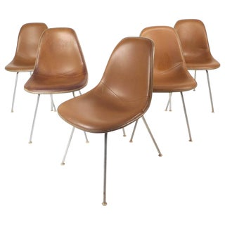 Mid-Century Modern Fiberglass Shell Chairs by Herman Miller - Set of 5
