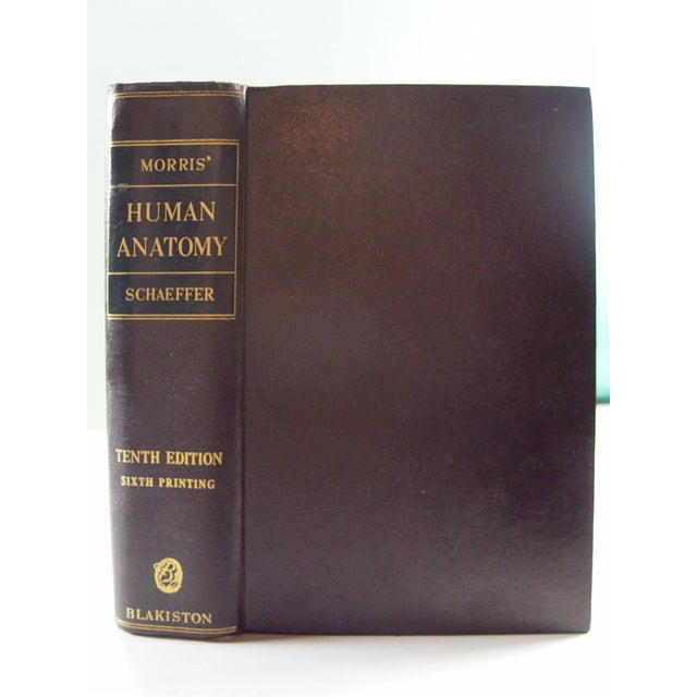 Human Anatomy Book, 1947 - Image 2 of 10