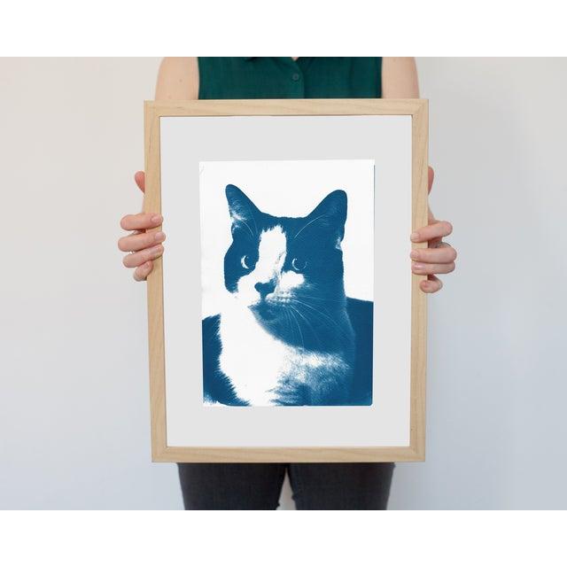 Cyanotype Print- Cat Portait - Image 2 of 4