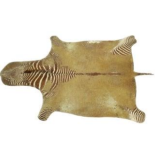 Large Heavily Distressed Antique Burchell Zebra Hide Rug