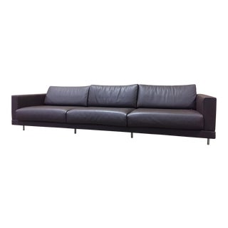 Matteograssi Dark Brown Leather Sofa