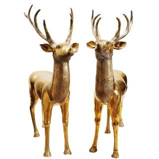 Vintage Large Brass Bucks- A Pair
