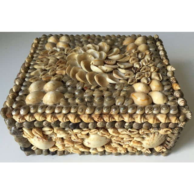 Vintage Shell-Encrusted Decorated Box - Image 2 of 7