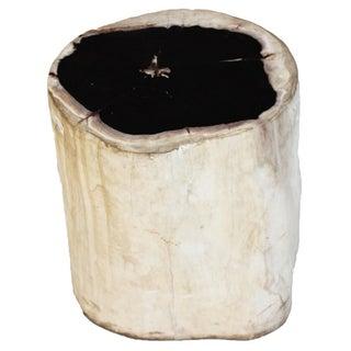 Organic Petrified Wood Stool