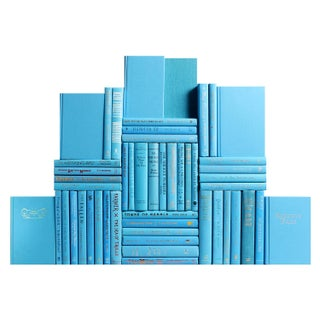 Modern Sky Blue Book Wall - Set of 50