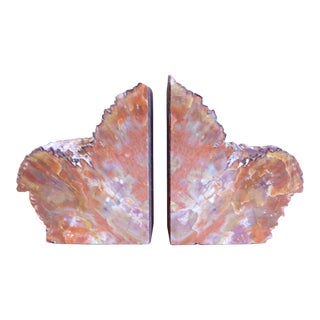 Coral Color Petrified Wood Book Ends