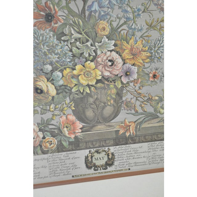 Vintage Hand Colored Botanical Prints - A Pair - Image 5 of 6