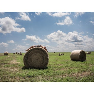 """""""Roll in the Hay"""" 1/50 Limited Edition Print"""