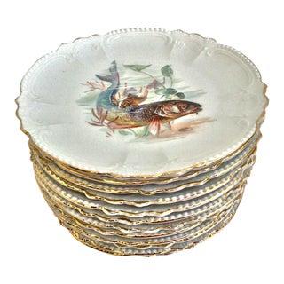 Bavarian Fish Plates - Set of 12