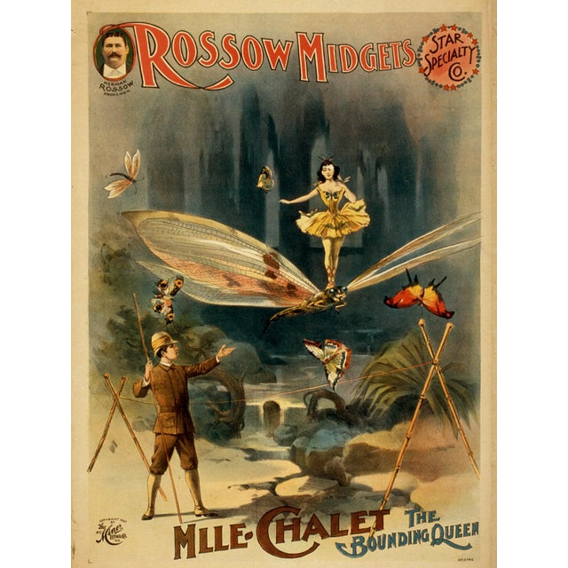 """""""The Bounding Queen"""" 1800s Vaudeville Poster Reproduction Print - Image 5 of 5"""