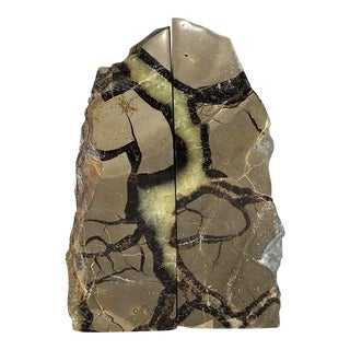 Septarian Polished Stone Bookends - A Pair