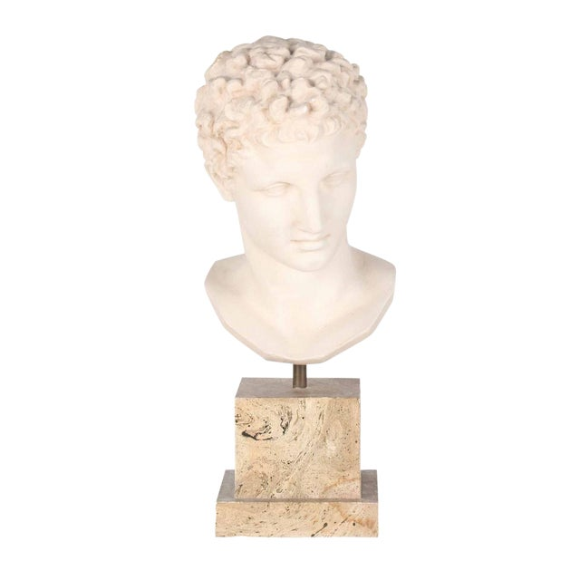 Vintage Plaster Bust After Apollo - Image 1 of 7