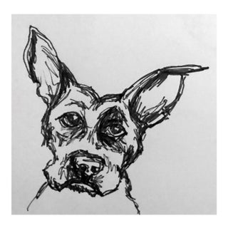 """""""Curious Max"""" Pen & Ink Drawing"""