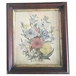Image of Vintage Botanical Print