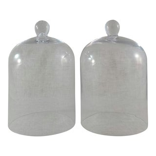 Glass Indoor/Outdoor Cloches - A Pair