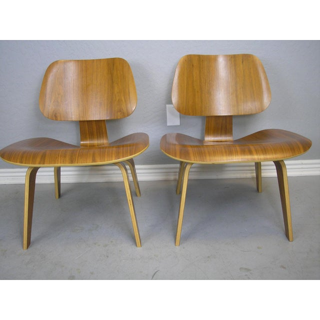 Charles and Ray Eames LCW Chairs - A Pair - Image 2 of 7