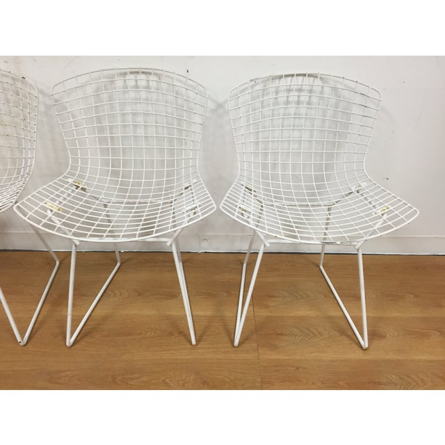 Harry Bertoia Style Patio Chairs
