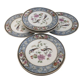 Hutschenreuther Ornithological Bavarian Selb Porcelain Dinner Plates - Set of 8