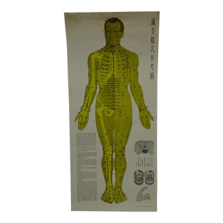 Vintage Chinese Acupuncture Body Chart Poster, 1972