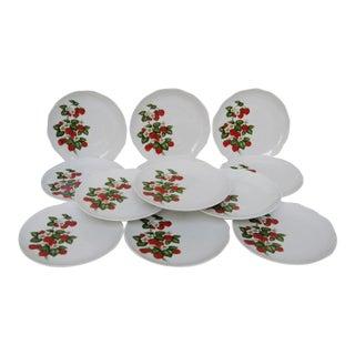 Bavarian Dessert Plates - Set of 12