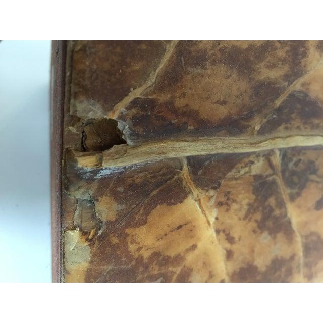 Tobacco Leaf Obelisk - Image 9 of 10