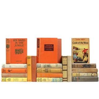 Mid Century Dustjacket Novels - Set of 20