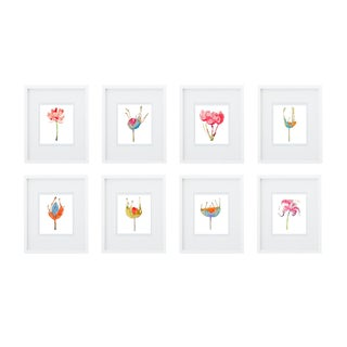 Botanical Groupings set of 8