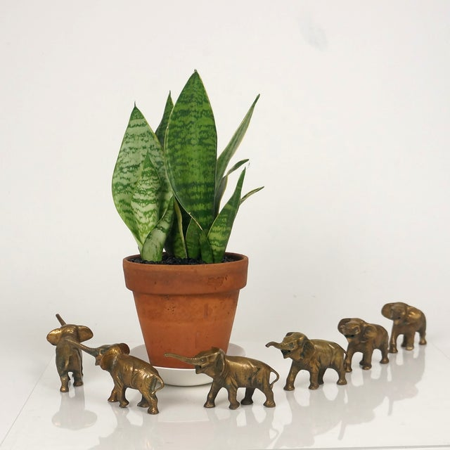 Image of Vintage 1960s Brass Elephant Figurines - Set of 6