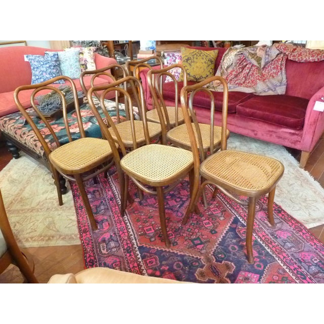 Vintage Bentwood and Cane Cafe Dining Chairs - Set of 6 - Image 5 of 10