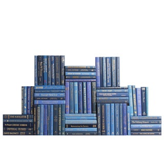 Modern Blue & Gold Book Collection - Set of 75