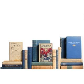 Blue & Tan American History Books - Set of 20