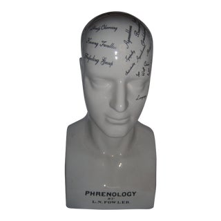 Large Ceramic Fowler Phrenology Head