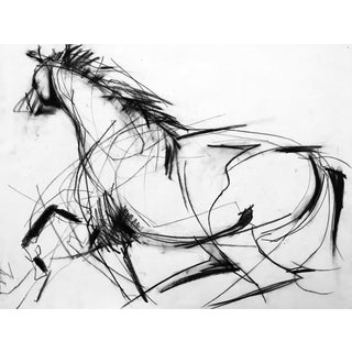 Horse Drawing #1