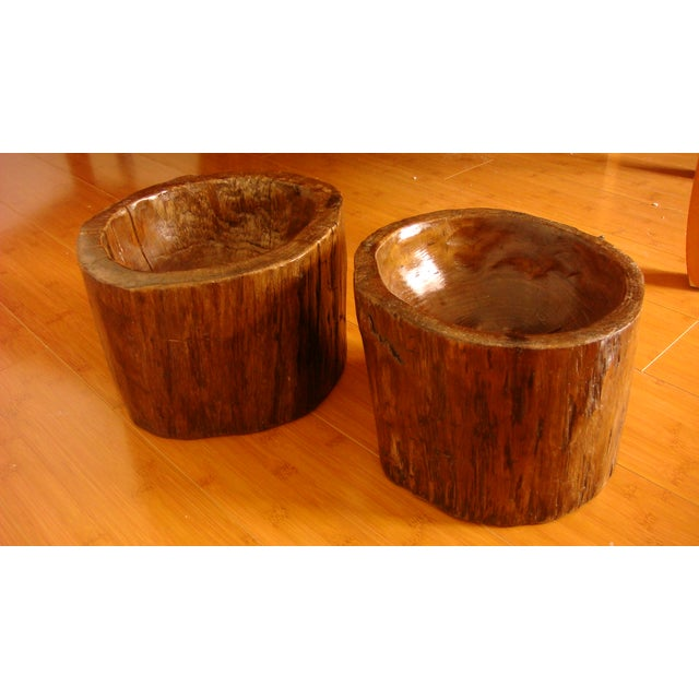 Image of Carved Rare Chinese Fir Root Planters - Pair