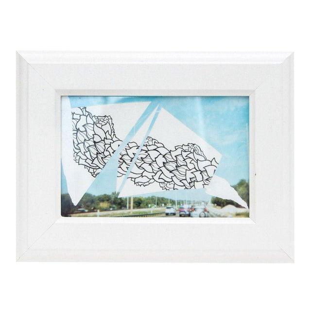 Framed Original Leaf Drawing & Photograph Collage - Image 1 of 5