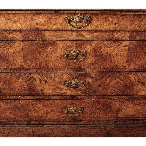 French Louis Philippe Burl Wood Chest - Image 2 of 7