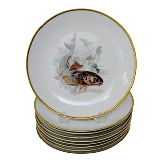 Rosenthal Porcelain Plates - Set of 9