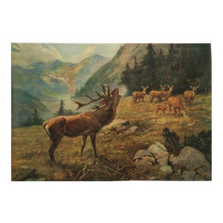 German vintage deer school poster