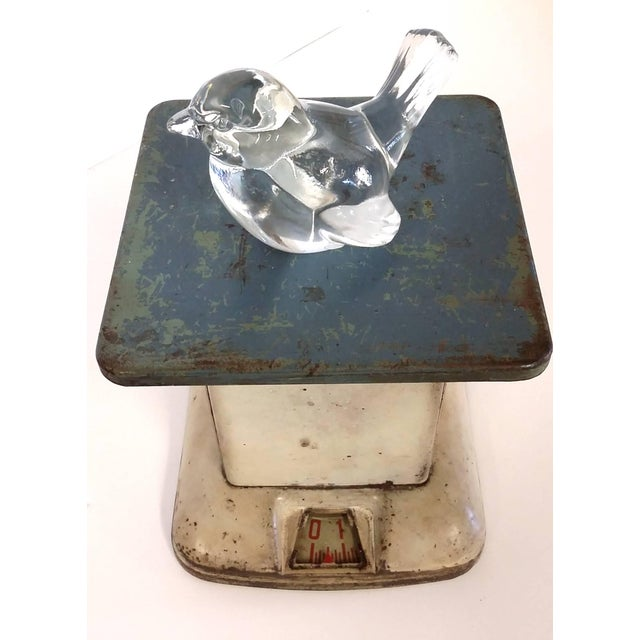 Image of Industrial Maid of Honor Kitchen Scale